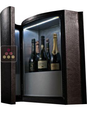 ancien mod le cave vin design de conservation ou de. Black Bedroom Furniture Sets. Home Design Ideas