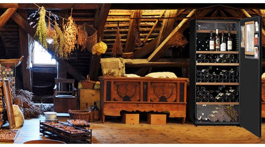 ancien mod le cave vin multi usages de conservation. Black Bedroom Furniture Sets. Home Design Ideas