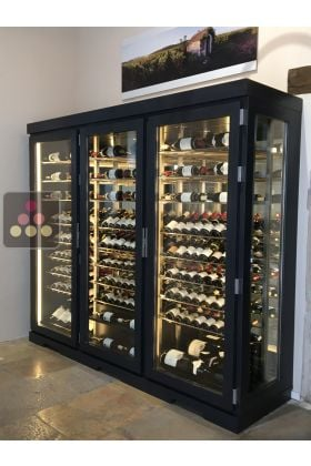 vitrine vin climatis e sur mesure 1 temp rature. Black Bedroom Furniture Sets. Home Design Ideas